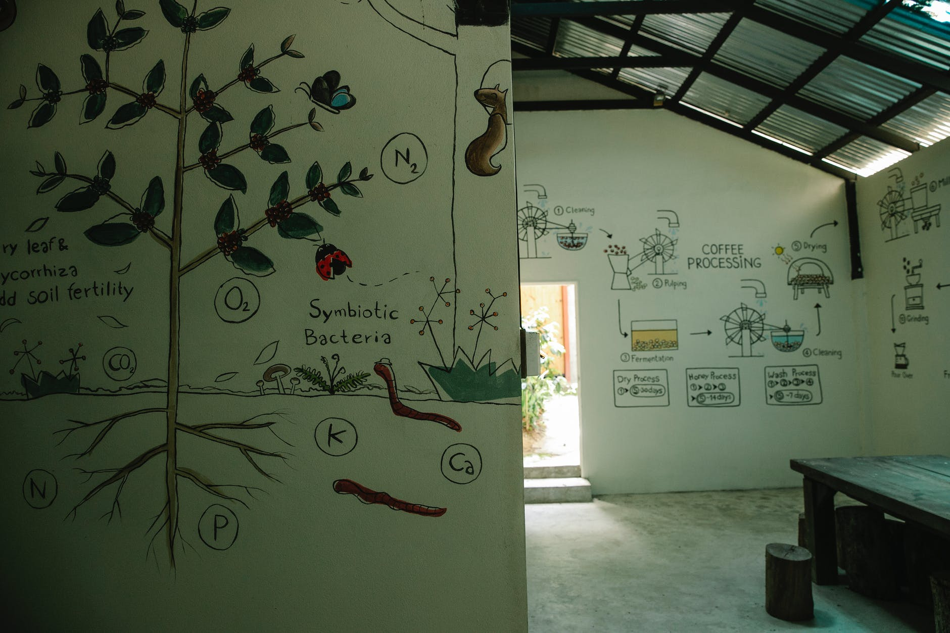 house with white walls decorated with pictures showing coffee processing